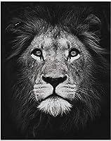 油絵ブラックライオンヘッドキットデジタル絵画アクリル絵の贈り物子供大人初心者
