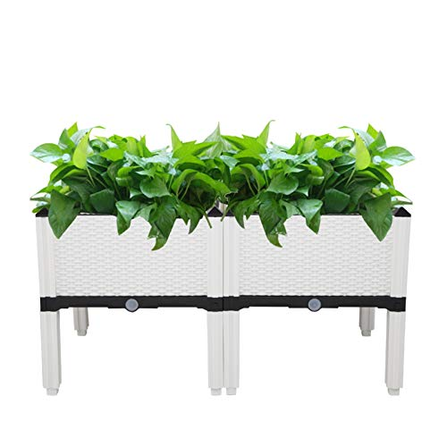 Jacquelyn Raised Garden Bed White Raised Bed Gardening Indoor Outdoor Plastic Planter Grow Box for Fresh Vegetables Herbs Flowers Succulents
