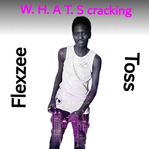 Flexzee Toss