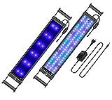 Main Luz LED, iluminación Acuario Acuario Blanco Azul Rojo Verde luz 7,5W/16W/22W/31W con ajustable Soporte para 30cm de 50cm/50cm de 70cm/70cm de 90cm/90cm de 110cm Acuario, color negro