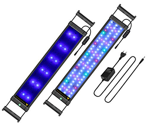 Main Luz LED, iluminación Acuario Acuario Blanco Azul Rojo Verde luz 7,5W/16W/22W/31W con ajustable Soporte para 30cm de...