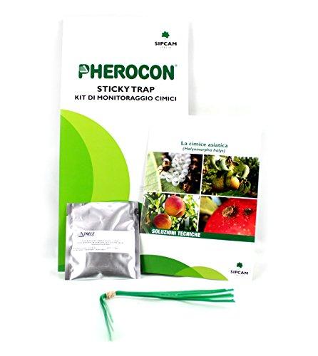 Gogoverde Trappola Adesiva a feromoni per cimici Pherocon Sticky Trap