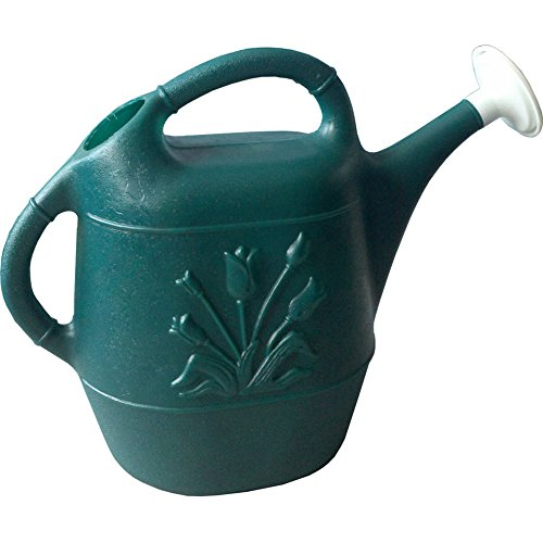 Union Products 63065 Watering Can, 2...