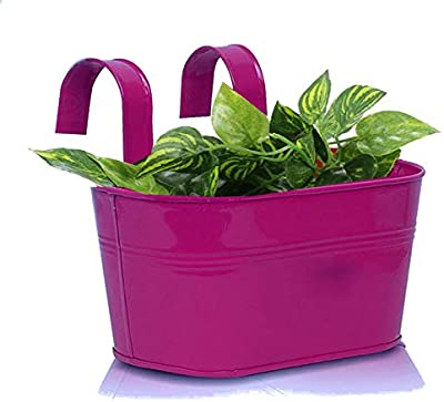 Cocogarden Metal Oval Railing Planters (Purple, Pack of 1)