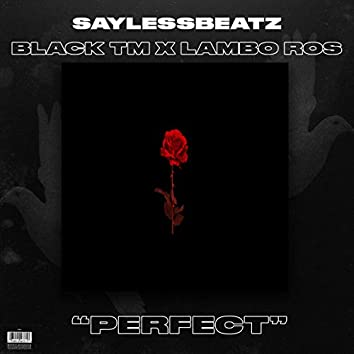 Perfect (feat. Black TM & Lambo Ros)