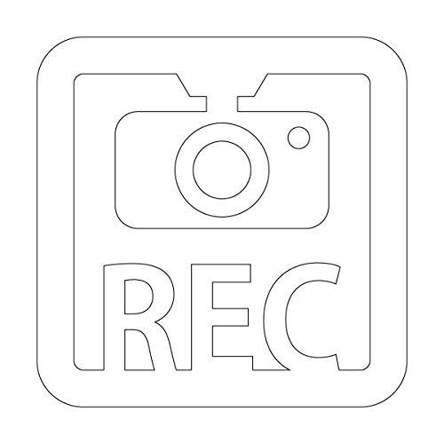 ドラレコ 録画中 撮影中 REC 防犯 セキュリティーマークのカッティング ステッカー・シール 光沢タイプ・防...
