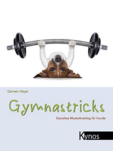 Gymnastricks: Gezieltes Muskeltraining für Hunde