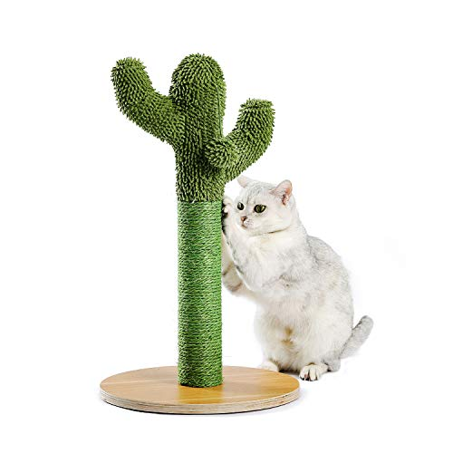 PAWZ Road Kratzbaum, Kaktus Katzenbaum, Sisalseil Kratzstamm, Feines Spielzeug für Katzen 55cm Hoch Grün
