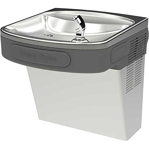 Halsey Taylor HTVZDPV-NF Single Voyager Water Fountain, Platinum, Non-Filtered