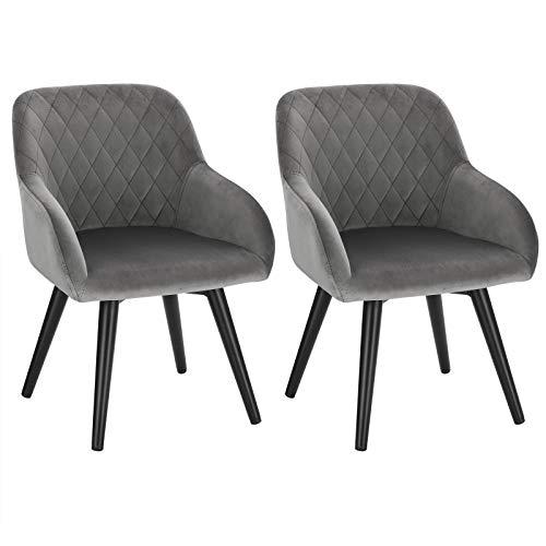 WOLTU 2er Set Kinderstühle, Stuhl mit Rückenlehne für Kinder, Samtstoff Metallbeine, HxBxT: 59x29x29 cm, Sitzhöhe 30cm, Kinderstuhl für Sitzgruppe, Kindertisch, Kinderzimmer, Grau