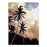CiCiDi Homer – Palmen, Bahamas Poster, Wandkunst, Bilder