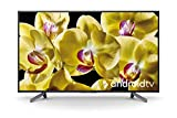 Sony KD-65XG8096 Android TV da 65 pollici, Smart TV LED 4K HDR Ultra HD con Voice Remote