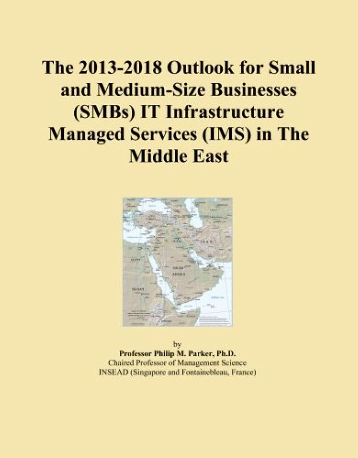 滴下コントラスト錫The 2013-2018 Outlook for Small and Medium-Size Businesses (SMBs) IT Infrastructure Managed Services (IMS) in The Middle East