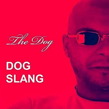 Dog slang