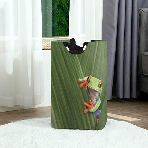 ZOANEN Wäschesack,Tier Rotäugiger Laubfrosch,der exotisches Makroblatt Costa Rica Regenwald tropisches Naturfoto versteckt,Großer faltbarer Wäschekorb,zusammenklappbarer Wäschekorb