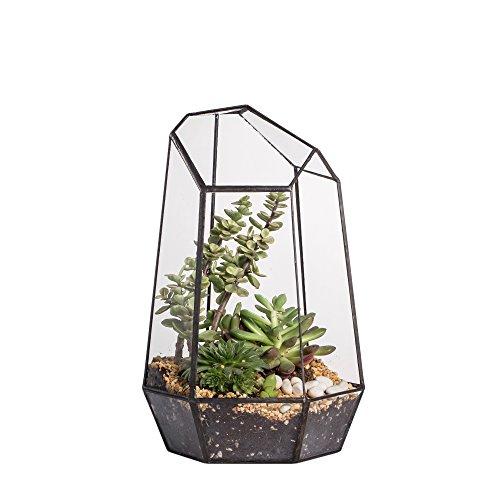 Blumentopf aus Glas, unregelmäßiges Prisma, geometrisch, Terrarium, 25 cm hoch, für Sukkulenten, Farn, Moos