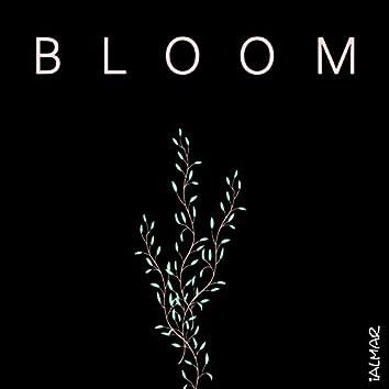 BLOOM (Radio Edit)