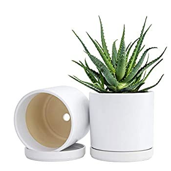 Set of 2 Plants Pot 6 Inch Ceramic Planter Pot for Plants with Drainage Hole and Saucer White 94-V-S-1