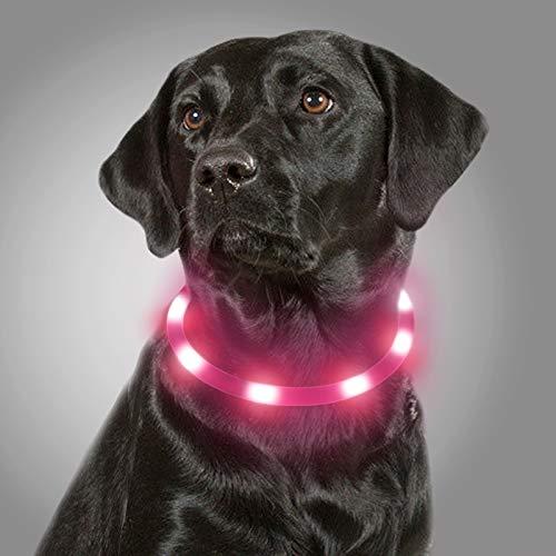 Joytale Collar Luminoso Perro, Collar para Mascotas LED Ajustables con Luz, Collares Recargable USB para Perros Pequeños, Medianos y Grandes, Rosa