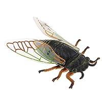 dailymall ミニチュア 昆虫モデル アクションフィギュア  動物玩具 子供玩具 おもちゃ 全14選択 - #14