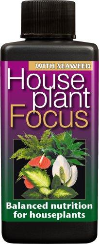 Houseplant Focus Balanced Liquid Concentrated Fertiliser 100ml (2)