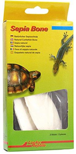 Lucky Reptile Sepia Bone, 1er Pack (1 x 32 g)