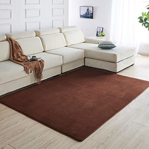 160 x200 Kortharig koraal fluwelen tapijt woonkamer vloermat salontafel mat slaapkamer deken bed vloerkleed vloermat deurkussen, 3,80 x 200 cm
