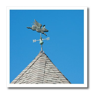 3dRose USA, Michigan, Mackinac Island. When Pigs Fly rooftop weathervane. - Iron On Heat Transfer, 10 by 10-inch, For White Material (ht_190230_3)