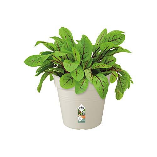 Elho Green Basics Pot De Culture 15 - Growpot - Coton Blanc - Intérieur & Extérieur - Ø 15 x H 13.8 cm