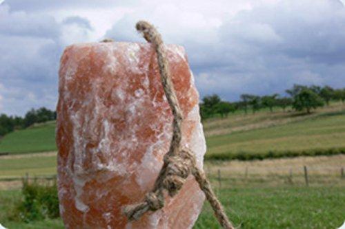 4x HIMALAYA Leckstein XXL 7 - 7,5 KG ! Salzleckstein Mineralleckstein von Biova (aus der Salt Range Pakistan) !