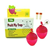 Two Strawberry Fruit Fly Traps