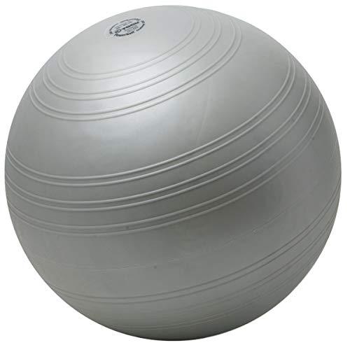TOGU Powerball Challenge ABS - Pelota para Fitness (55-65 cm) Plata Plata Talla:55-65 cm