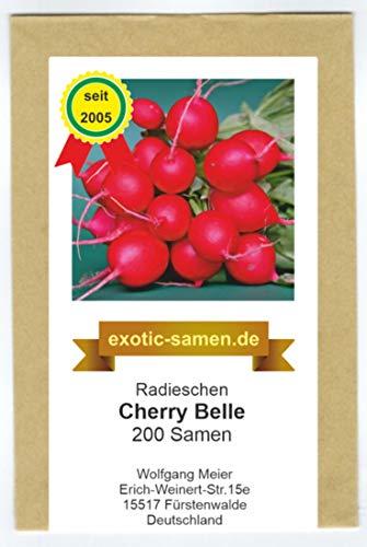 Radieschen - Cherry Belle - schnellwüchsig - früh reifend - köstlich - 200 Samen