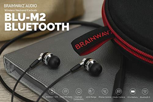 Brainwavz BLU-M2