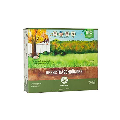 Plantura Bio Herbstrasendünger mit Langzeit-Wirkung, 3 kg, für maximale Winterhärte, idealer Dünger für den Rasen im Herbst, unbedenklich für Hund, Haus- & Gartentiere, Rasendünger, Langzeitdünger