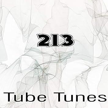 Tube Tunes, Vol.213