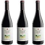 Casar De Burbia Vino Tinto  - 3 botellas x 750ml - total: 2250 ml
