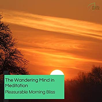 The Wandering Mind In Meditation - Pleasurable Morning Bliss