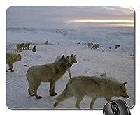 北極オオカミマウスパッド、マウスパッド(犬のマウスパッド)