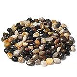 JOOLEE Piedras pequeñas de 500 g, (1-3 cm), piedras decorativas naturales, minipiedras decorativas surtidas para macetas, jardín, acuario, terrario