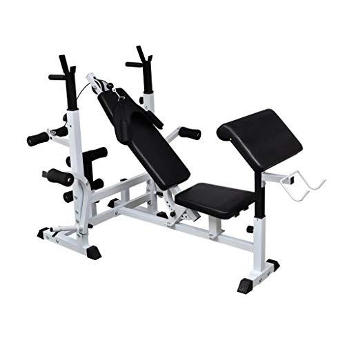 vidaXL Banco de Pesas Ejercicios Multiestación Maquina de Gimnasio Musculación