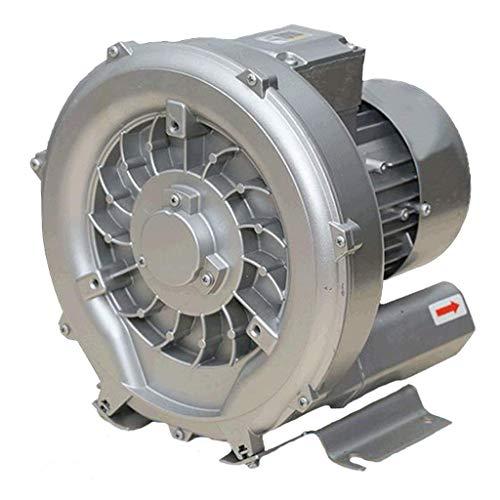 LXLH Ventilatore, Foglia centrifuga ad Alta Pressione, Design del Ciclo centrifugo, Guscio in Alluminio aeronautico, Motore in Rame, aspirazione e rotativo a Basso Rumore a Doppio Scopo, Utilizza