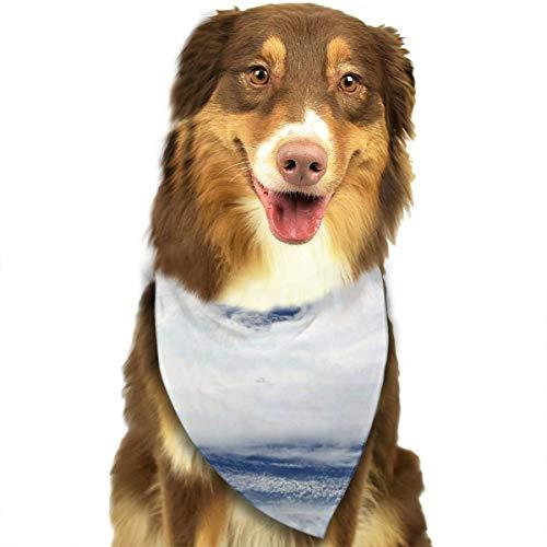 Trechter Hoogte Sky Air Mass Gepersonaliseerde Hond Kattenhalsdoek Set Geschikt voor Kleine tot Grote Hond Katten