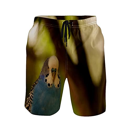Mielpdaz Pantalones cortos de playa para hombre, diseño de plumas, color azul y blanco, 1 color, XXL