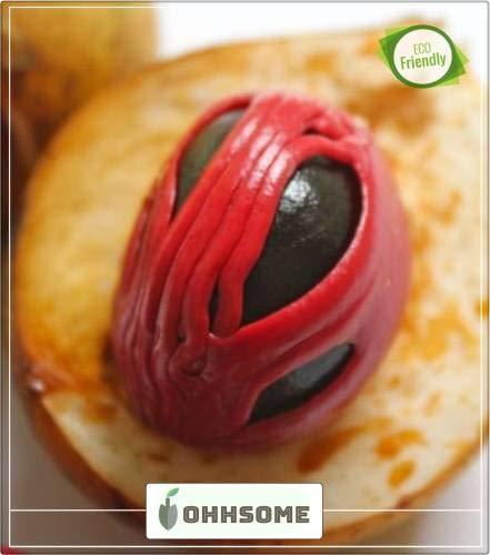SANHOC Samen-Paket: SEEDNutmegSeed Muskatnussbaum Samen Küche Garten Samen Packung Saatgut (20 pro Paket)