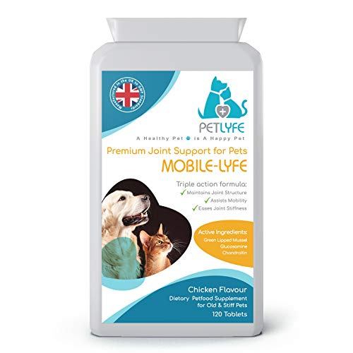 PetLyfe Hip Joint Support Supplement for Stiff Old Dogs, Joint Aid for Dogs & Cats, Arthritic Pain Relief, Glucosamine, Chondroitin, Green Lipped Mussel,120 Tablets, UK Manufactured