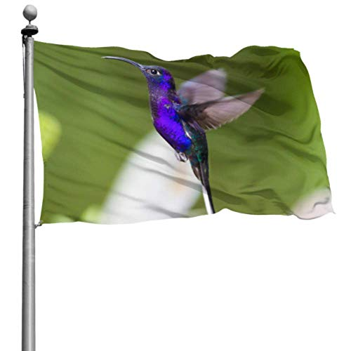 Mesllings - Banderas para adultos (120 x 180 cm), diseño de elfo y colibrí, diseño de bandera con ojales para decoración interior/exterior