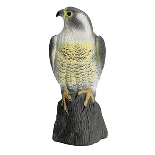 QAZ Large Falcon Decoy Bird Deterrant, lebensechte, vollmundige Greifvogel-Schädlingsbekämpfung Gartenstatue Cat and Bird Repeller Garden Po,1pack