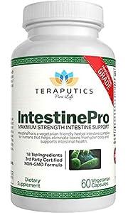 IntestinePro Intestine Support for Humans with Non-GMO Wormwood, Black Walnut, Echinacea + 15 More Premium Ingredients, 60 Vegetarian Capsules from Teraputics