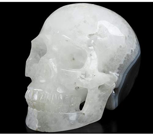 "Skullis 5.0"" Banded Agate Crystal Skull, Hand Carved Gemstone Fine Art Sculpture, Reiki Healing Stone Statue.1344"